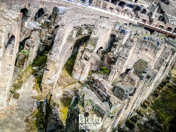 Colosseum Beauty